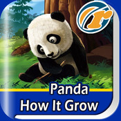 Panda – How It Grow