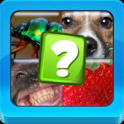 What`s in common-4 pics 1 word to guess Multiplayer