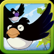 Fat Bird Dash-Exciting Adventure in Dangerous Forest usa dash hd