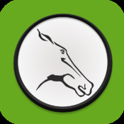 Just Horse Racing racing