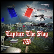 Capture the Flag 3D