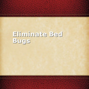 Eliminate Bed Bugs