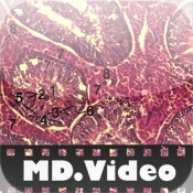 MDVideo: Histology md