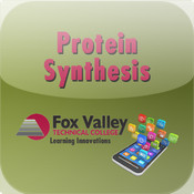 Protein Synthesis synthesis