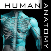 Human Body Anatomy system keylogger