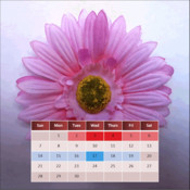 My Menstrual Diary menstrual