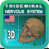 Trigeminal Nerve 3D