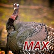 Turkey Hunting MAX hittites tours turkey