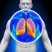 X-Ray 3D Anatomy Pro