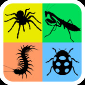 Animals Life Cycle - Insects and Arachnids