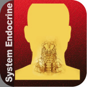 HD System Endocrine