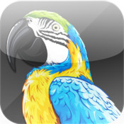VINA Talking Parrot