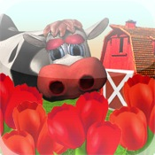 Tap Ranch : Red Tulips