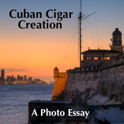 Cuban Cigar Creation