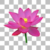 Background Eraser for iOS - Super Cut Out Image Outline erase files