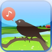 Chirp! Bird Songs USA +