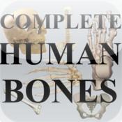 complete Human Bones