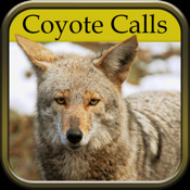 Coyote Hunting Calls