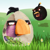 Angry Zombie Birds HD