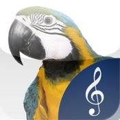 Fun Animal Sounds - Moo :-)
