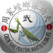 Mantis Kung Fu Drills stop destruction