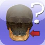Anatomy Quiz for iPad anatomy quiz