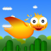 Lucky Duck Free- The Adventure of Duck Bird