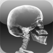 Anatomy Quiz HD