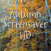 Autumn Screensaver HD bear screensaver