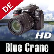 Nikon D90 - Grundlagen HD nikon d80 sale