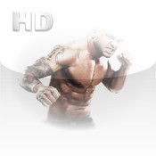 Real Fighters for iPad