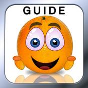 Guide for Cover Orange