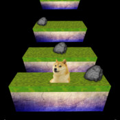 Jumping Doge
