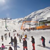 Ski Report Pro