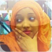 The Somali Celebrities