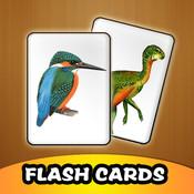 Kids Animal Flash Cards