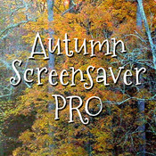 Autumn Screensaver Pro free basketball screensaver