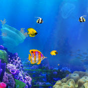 The Tlittle Fish Big Fish Eat Small Fish : Easy Fish Games For Kids