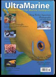 UltraMarine - Pure Inspiration for Marine Hobbyists