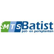 MTS Batist kathy ireland bedding