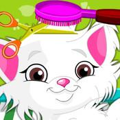 Cat Hair Salon Spa
