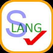 Net Slang Quizlet
