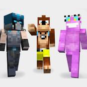 500 + Minecraft Skins