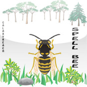Spell Bee Challenge Free free search spell