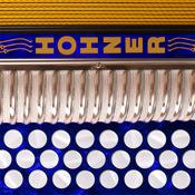 Hohner-FBbEb SqueezeBox
