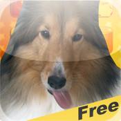 Magic Dog Screen Cleaner xp cleaner free