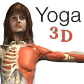 Travel Yoga 3D In the Plane 1.0 Full