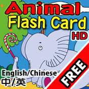 Flash Card - Animal  HD Free free flash website