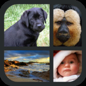 Words and Pics Photo Quiz: Guess a Word from Four Pictures!
