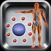 Body Particles